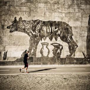 Bologna, Museo della storia di Bologna, 18 marzo - 26 giugno 2016 / Roma, bastioni del Tevere, dal 21 aprile 2016.  FD numero 27, mag-giu 2016